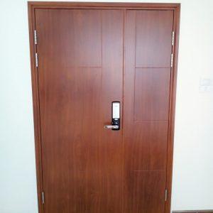 cửa thép vân gỗ SGD 22
